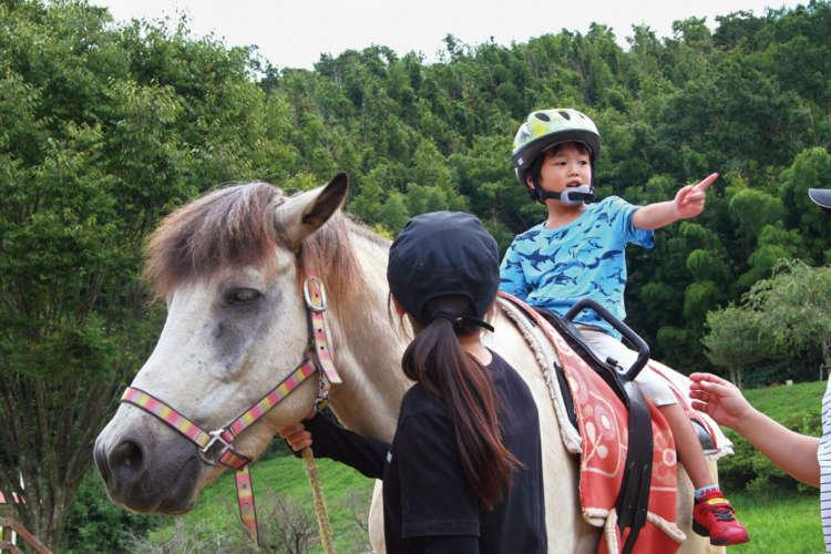 道産子のフジに乗って、乗馬療育の個別指導を受ける園児