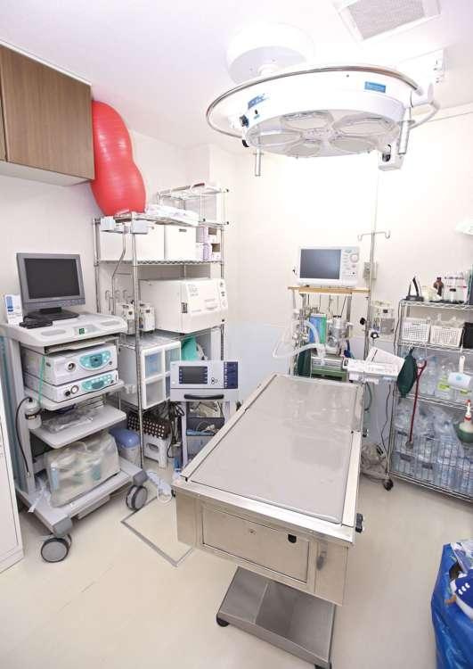 たいていの手術は院内で行われるため、飼い主さんも安心できる