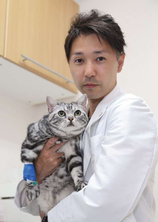 Dr.アドバイス 伝染性腹膜炎に注意!