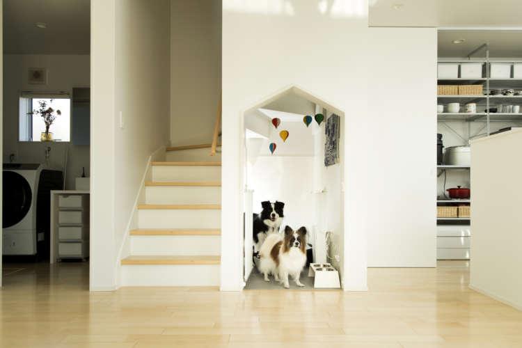 【熱いペット愛】ペットリハウスでマイホームを手に入れたご夫妻と愛犬との理想の暮らしをうかがいました