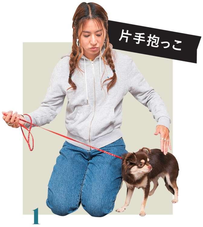 リードをしっかり持ち、愛犬の真横にしゃがみ、逆の手を、愛犬の体の真横からおなかへ向けて通します