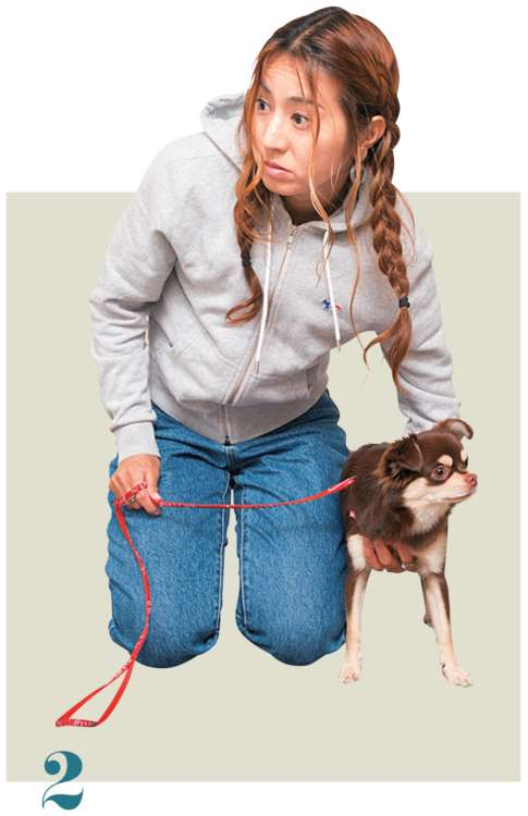 通した手の指先を愛犬の胸に添え、上腕を体に寄せます。愛犬の胸の広さによって、添わせる指の本数を変えましょう
