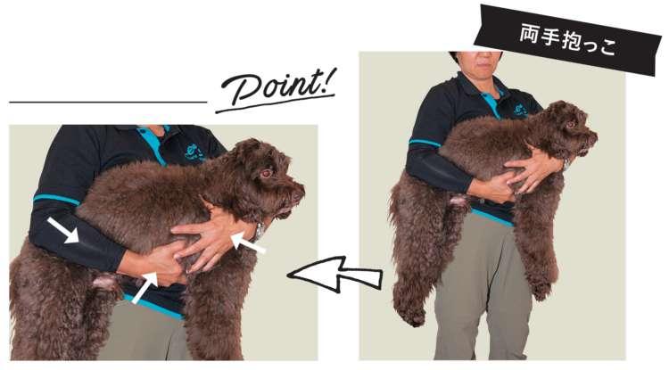 まず片方の肘で骨盤を押さえ、上腕は肋骨(ろっこつ)を支えます。逆の腕は胸の前を回り込ませ、肩を支えて持ち上げましょう