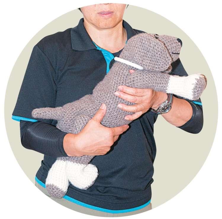 愛犬の前足の下から支えてしまうのは、背骨が反ってしまうので体に負担をかけてしまいます