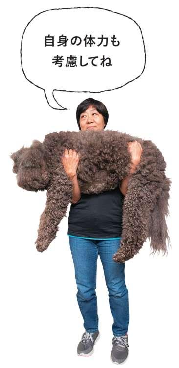 中型犬でも、大型犬に匹敵するほど大きく、体重がある犬種もいます。安定感のある「両手抱っこ」や、大型犬のように抱え上げるのも有効な方法です
