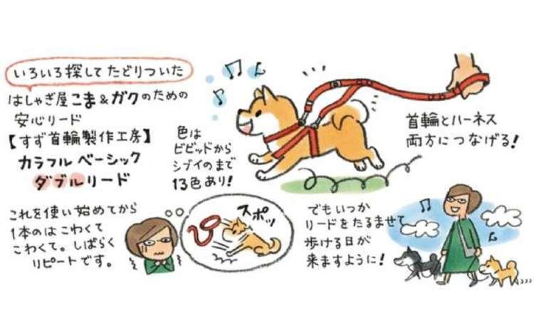 【DOG's TALE⑨】いとしのいぬモノ 第1回
