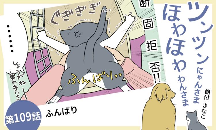 【まんが】第109話:【ふんばり】まんが描き下ろし連載♪ ツンツンにゃんさま ほわほわわんさま