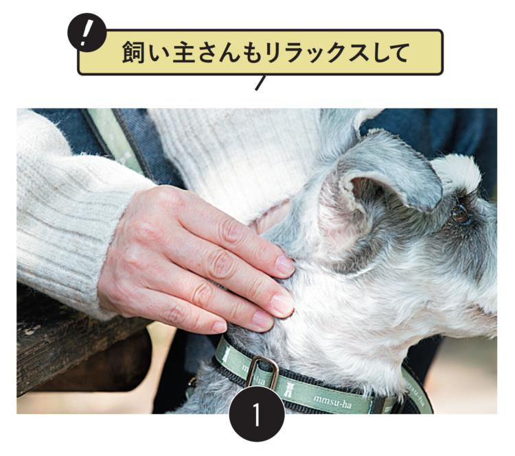 飼い主さんが大きく息を吸いながら、 行います 指をそろえて愛犬の皮膚を持ち上げるように 引っ張ります