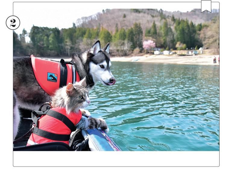 ボートに乗るのも慣れた表情の、ののちゃん & Guriくん