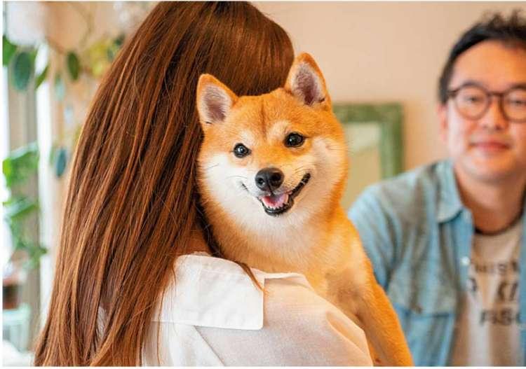 SNSでおなじみ! インフルエンサーさんのWaku Waku DOG LIFE!【no.1】
