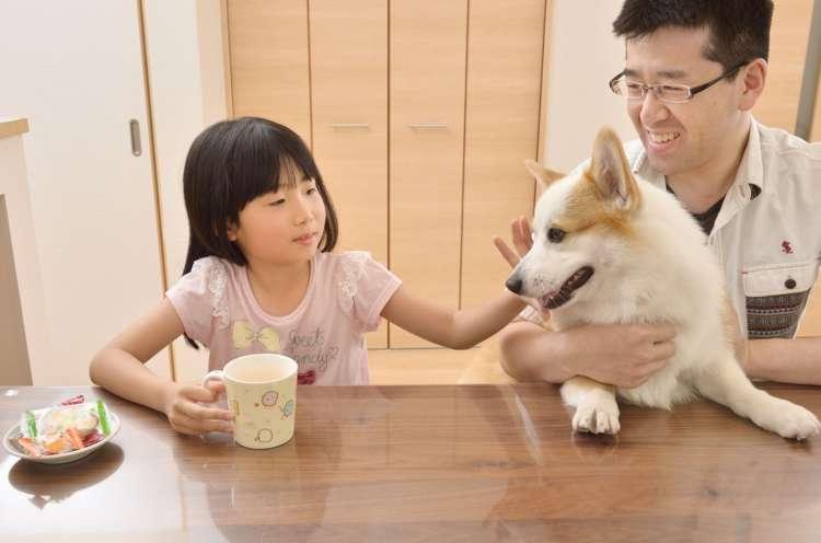 子犬を見た時一緒に暮らすイメージがわきました