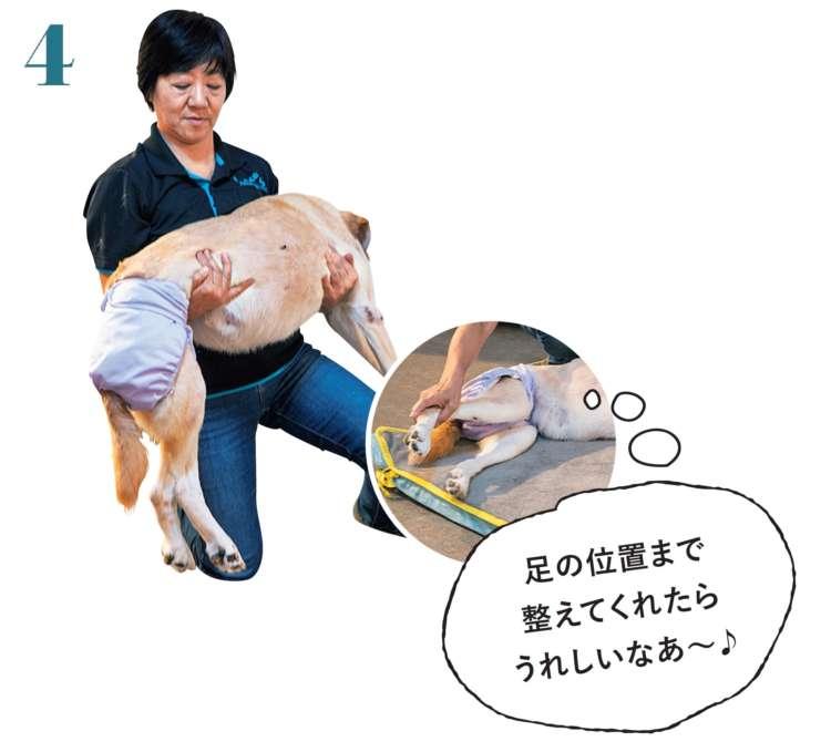 背骨が真っすぐで、真上に向いていることを意識しながら、ゆっくりと抱え上げます。また、下ろすときは、足から地面につけ、ゆっくりと寝かせていきます