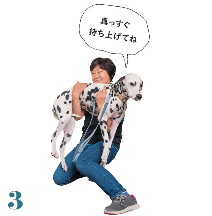 愛犬の体を自分の体に寄せ、真っすぐ抱え上げます。背骨が地面に対して水平になっていないと愛犬に負担がかかるので注意!