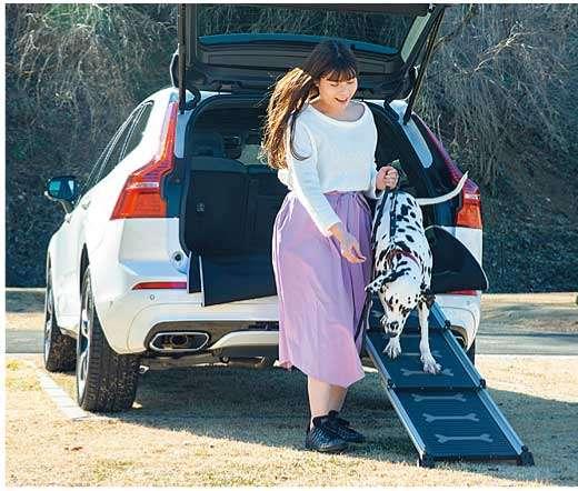 犬の足腰に負担をかけずに車の乗降ができるイージーステップもボルボから用意されています