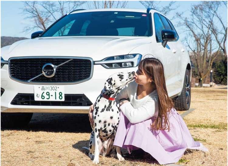 心置きなく運転に集中できるのは、愛犬にとっても座り心地がよく過ごしやすい空間が用意されているからこそ