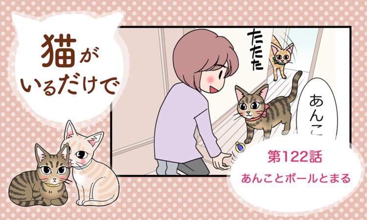 【まんが】第122話:【あんことボールとまる】まんが描き下ろし連載♪ 猫がいるだけで(著者:暁龍)