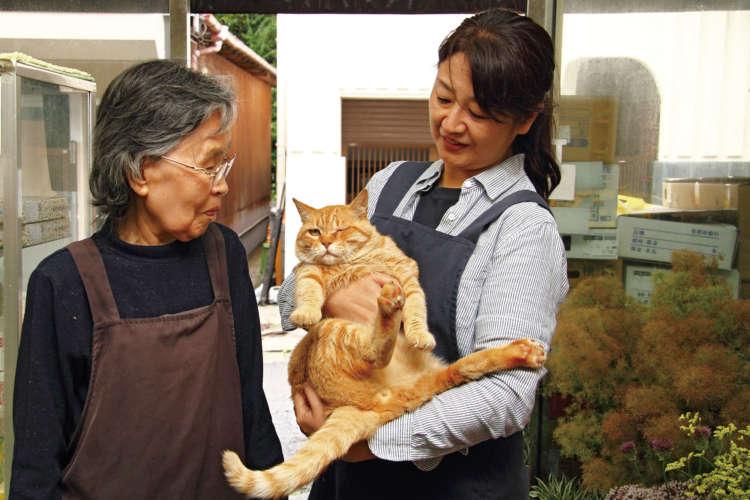 細野美智子さん(左)と、姪の国分いづみさん(51歳)に抱かれるウインクのチャト