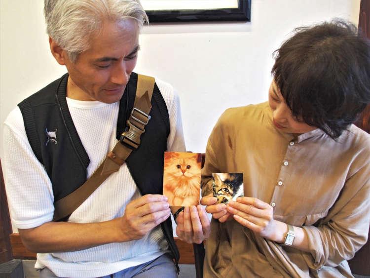亡き愛猫の写真を手にする山田夫妻