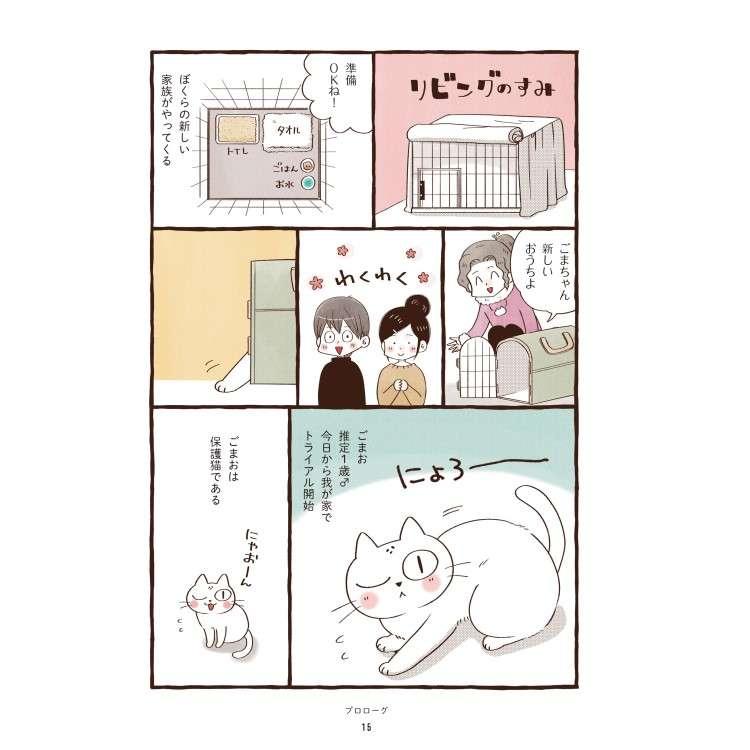 まんがはじめての保護猫