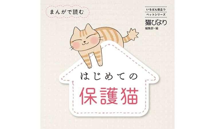 まんがで読む はじめての保護猫「猫と暮らしたい!」そう思った時に読んでほしい1冊を紹介します