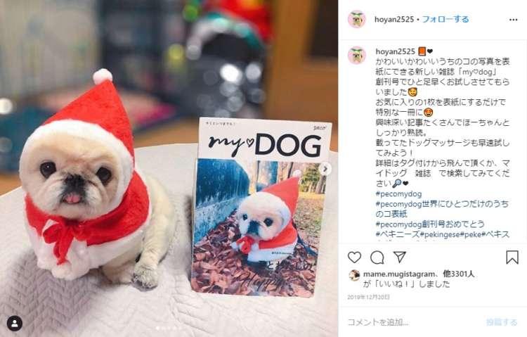 うちのコ表紙の「my♡DOG」を手にした飼い主さんたちの声が、Instagram上に集まっています。#pecomydog