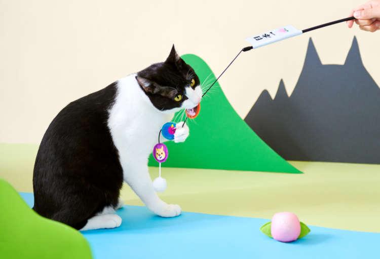 【愛猫用】PECOBOX(ペコボックス) 『桃太郎』受付中!愛猫のプレゼントの中身を解説