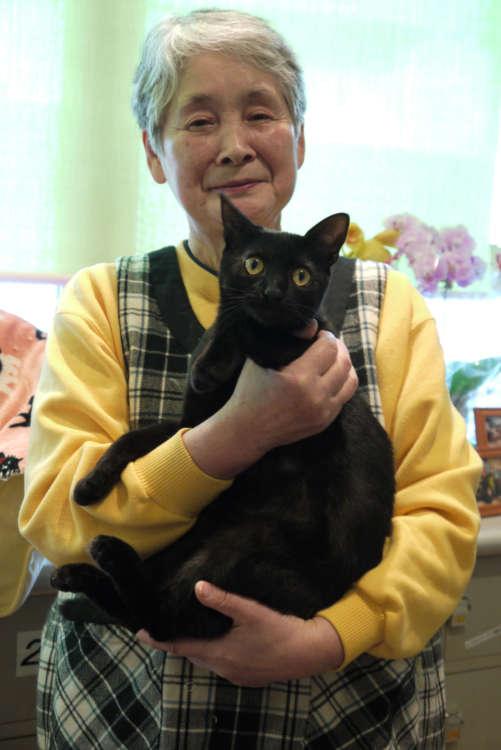 猫愛に満ちた花子さんとのり巻きちゃん