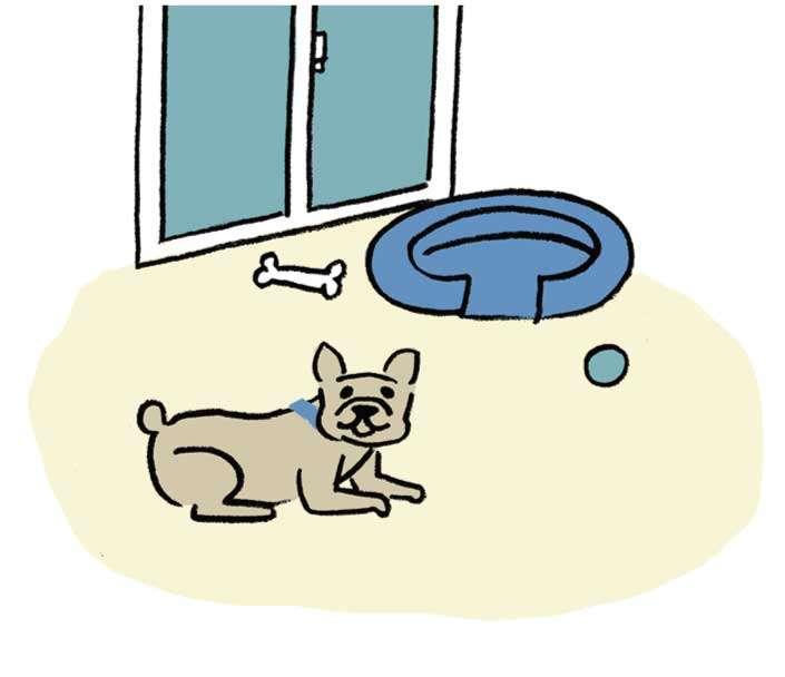 愛犬がくつろげる 愛犬専用の部屋が欲しいわ