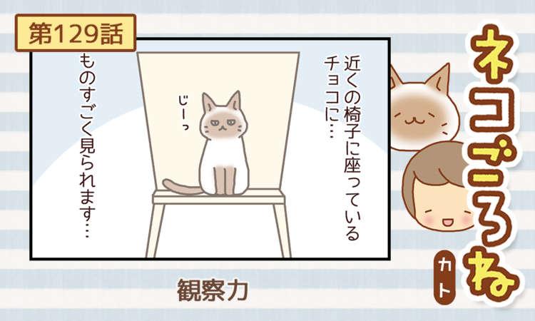 【まんが】第129話:【観察力】まんが描き下ろし連載♪ ネコごろね(著者:カト)