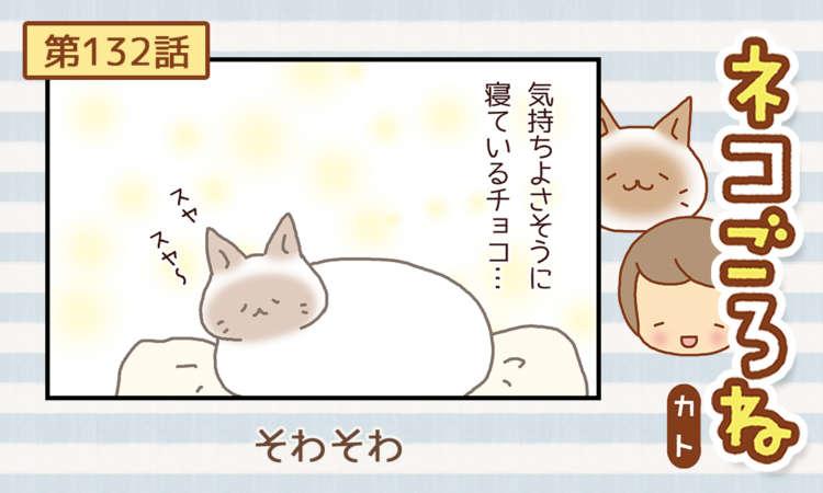【まんが】 第132話:【そわそわ】描き下ろし連載♪ ネコごろね(著者:カト)