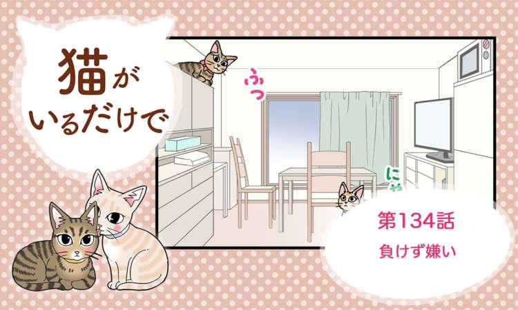 【まんが】第134話:【負けず嫌い】まんが描き下ろし連載♪ 猫がいるだけで(著者:暁龍)