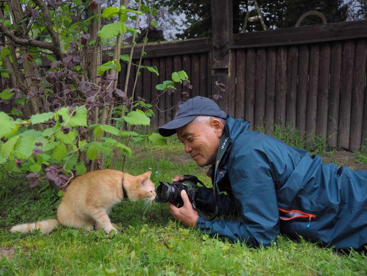 【動物写真家 岩合光昭氏がCM出演!】 食事の吐き戻し軽減を中心とした7つの機能で健康サポート