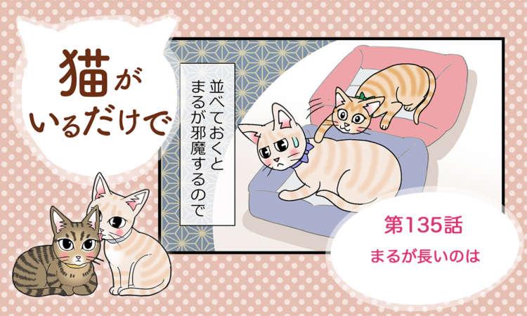 【まんが】第135話:【まるが長いのは】まんが描き下ろし連載♪ 猫がいるだけで(著者:暁龍)