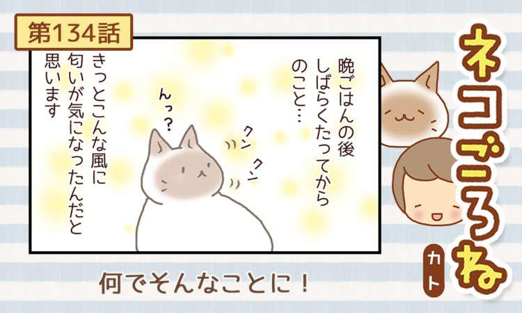 【まんが】第134話:【何でそんなことに!】まんが描き下ろし連載♪ ネコごろね(著者:カト)