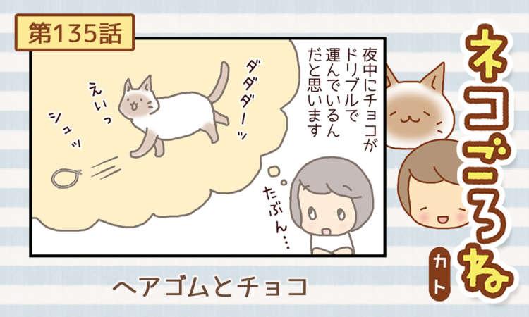 【まんが】第135話:【ヘアゴムとチョコ】まんが描き下ろし連載♪ ネコごろね(著者:カト)