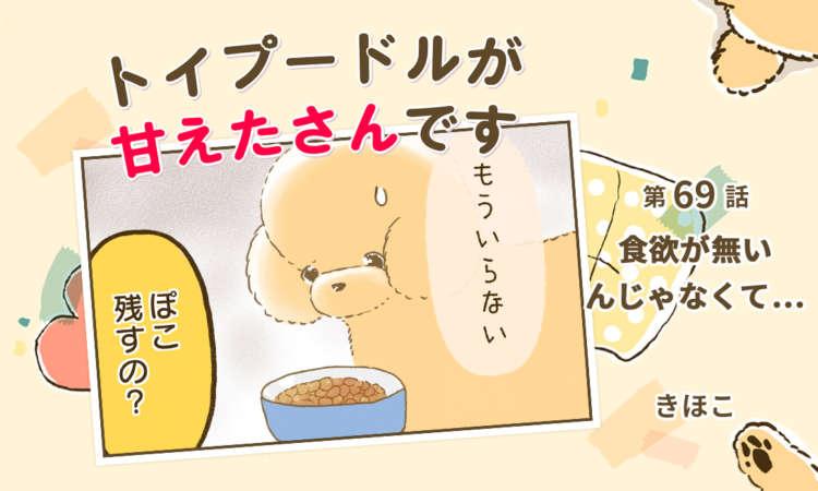 【まんが】第69話:【食欲が無いんじゃなくて…】まんが描き下ろし連載♪トイプードルが甘えたさんです