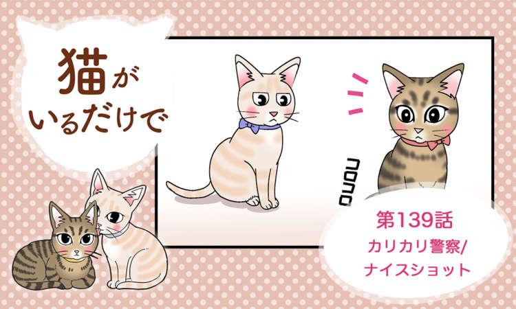 【まんが】第139話:【カリカリ警察/ナイスショット】まんが描き下ろし連載♪ 猫がいるだけで
