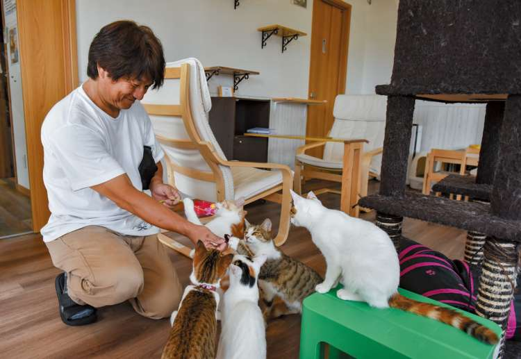 「Cat Cafe 美ら猫」
