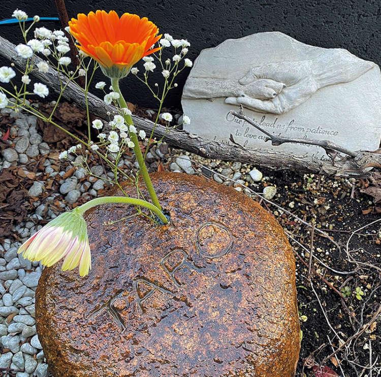 愛犬「タロ」の墓