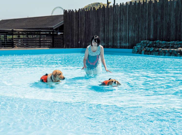 夏旅は水を求めて~初級編:初めてのプールにチャレンジ!