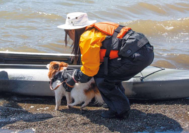 舟が岸から動かないのを確認し、愛犬を抱っこして 乗せます
