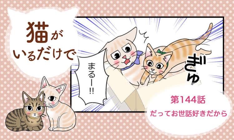 【まんが】第144話:【だってお世話好きだから】まんが描き下ろし連載♪ 猫がいるだけで(著者:暁龍)