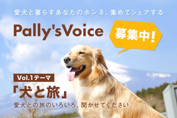 愛犬との旅のいろいろ、聞かせてください!「犬と旅」のホンネ募集中【Pally's Voice】