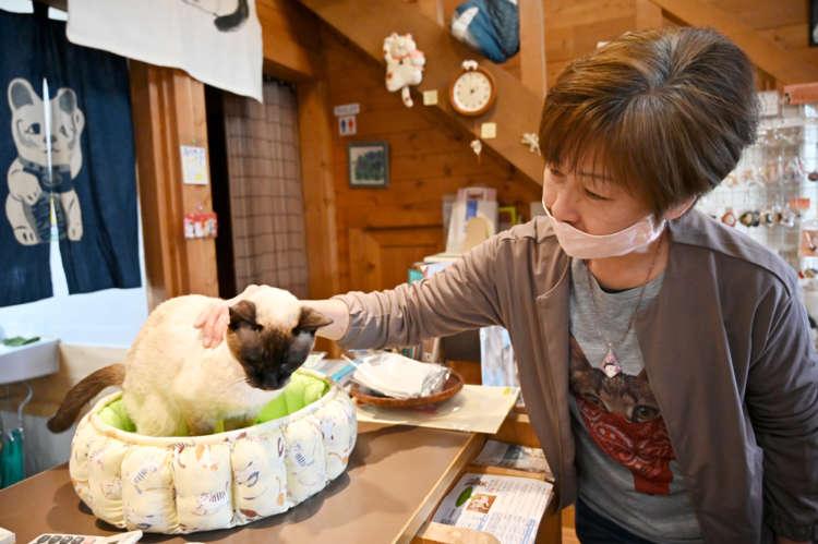 一点ものの手作り猫雑貨が並ぶウッディな喫茶店【みよし】