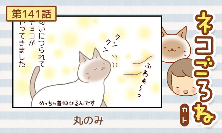 【まんが】第141話:【丸のみ】まんが描き下ろし連載♪ ネコごろね(著者:カト)