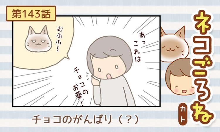 【まんが】第143話:【チョコのがんばり(?)】まんが描き下ろし連載♪ ネコごろね(著者:カト)