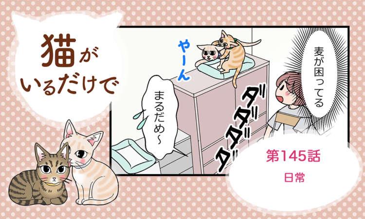 【まんが】第145話:【日常】まんが描き下ろし連載♪ 猫がいるだけで(著者:暁龍)