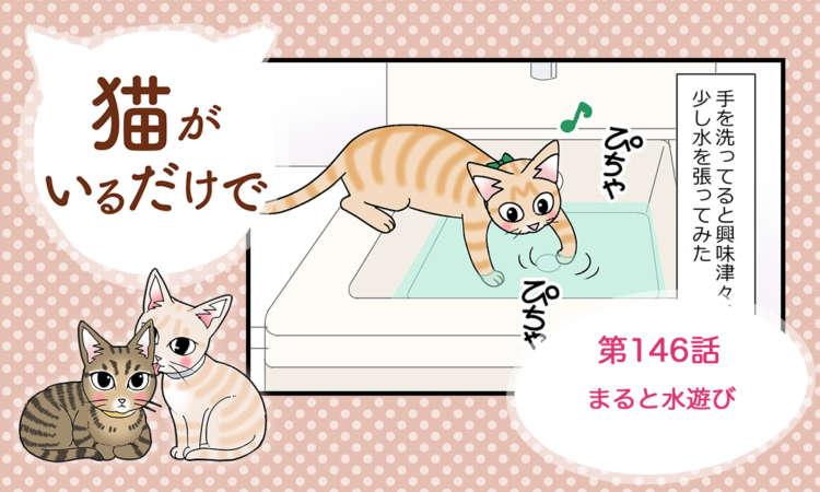 【まんが】第146話:【まると水遊び】まんが描き下ろし連載♪ 猫がいるだけで(著者:暁龍)