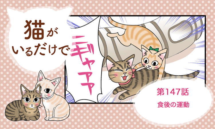 【まんが】第147話:【食後の運動】まんが描き下ろし連載♪ 猫がいるだけで(著者:暁龍)