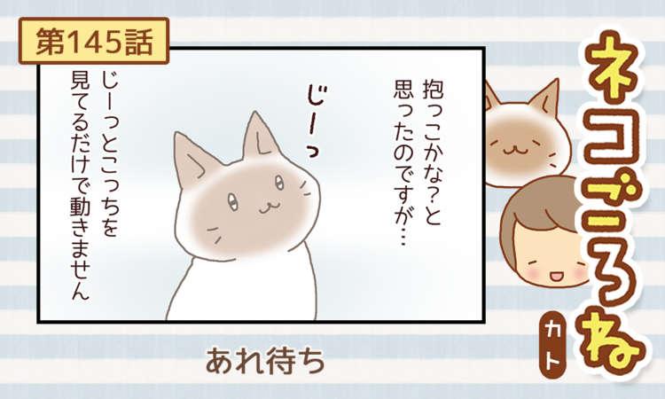 【まんが】第145話:【あれ待ち】まんが描き下ろし連載♪ ネコごろね(著者:カト)